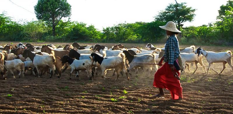 Myanmar 2012 jsc 120.jpg