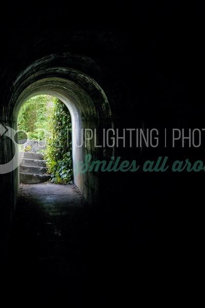 Tunnel to Garden_batch_batch.jpg