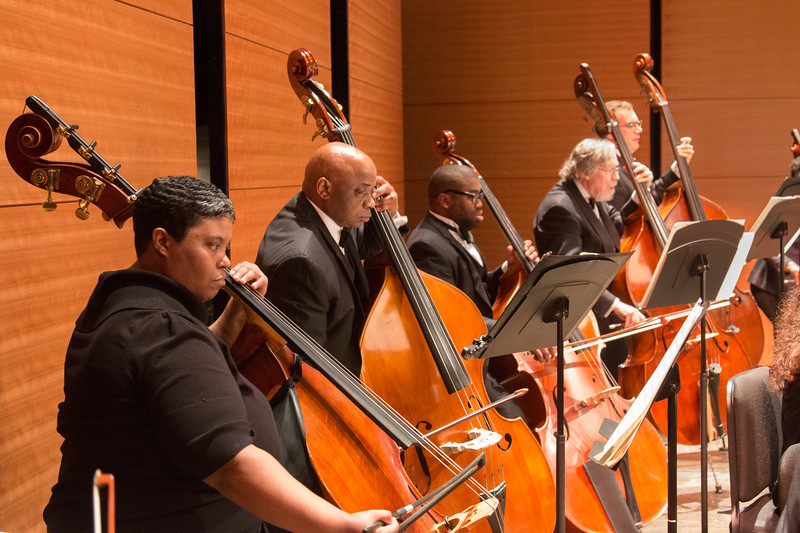 Kim Johnson and her bass section -- Symphony of the Potomac, January 29, 2017