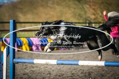 Advanced Steeplechase Lg
