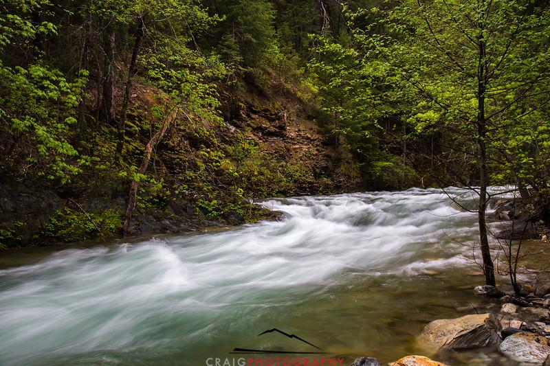 Downie River, California #2