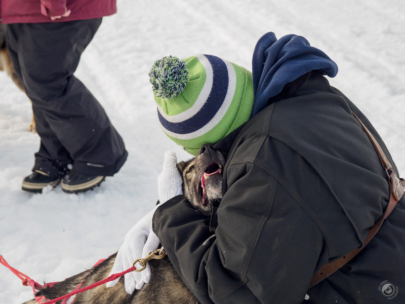 20190325_Blaire_and_Liz_Mushing_61.jpg