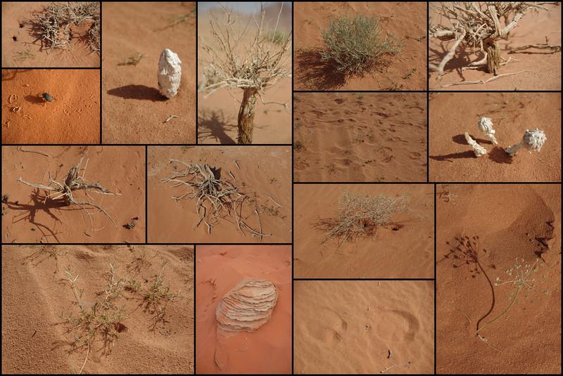 20100514_Wadi_Rum.jpg