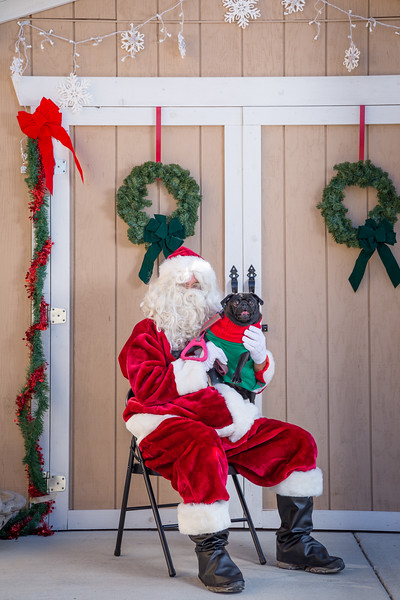 Pet Pictures With Santa-30.jpg