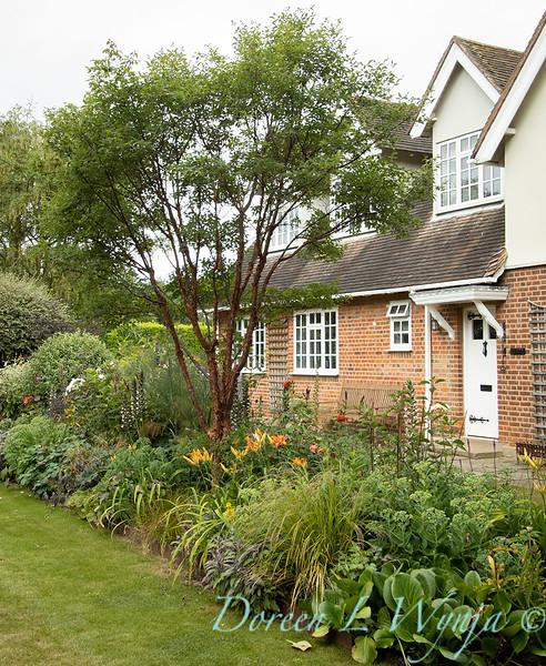 Beechleigh Garden - Jacky O'Leary garden designer_2955.jpg