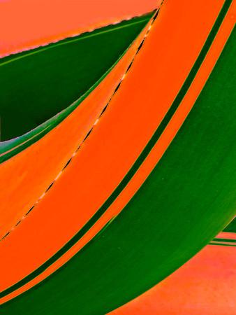 Rawlings_Conservatory