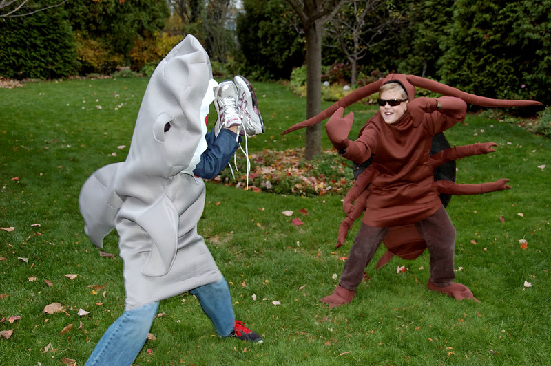 Jack as Shark vs Will as Cockroach.jpg