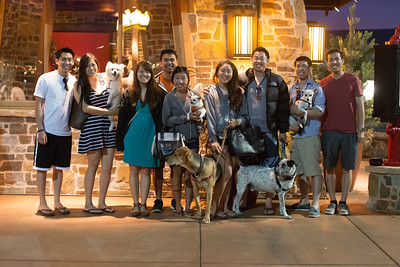 6.21.2014 / FamiLY Dog Date
