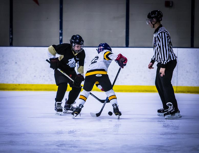 Bruins-53.jpg