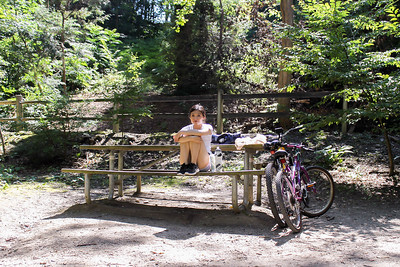 Wissahickon Cycle Picnic