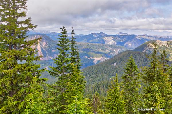Goat Rocks Wilderness PCT White Pass (July 2019)