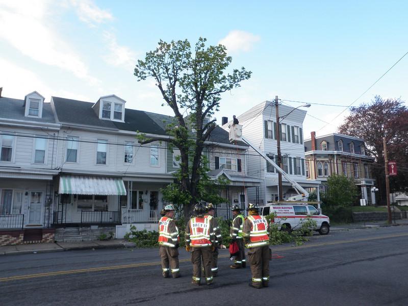 mahanoy city tree incident 5-8-2010 026.JPG