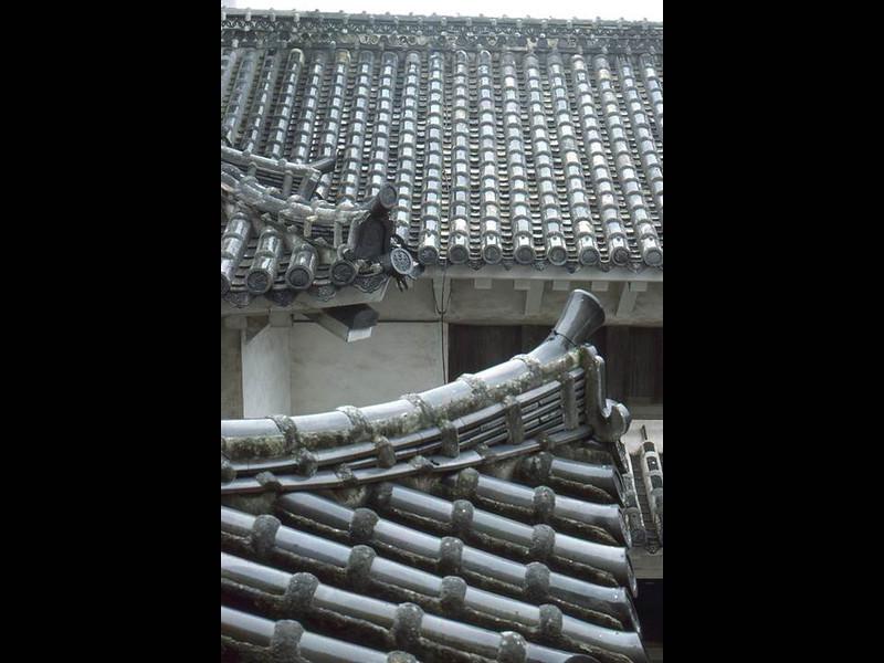 Slide135.JPG