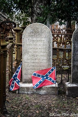 Magnolia Cemetery, Charleston, SC 2015