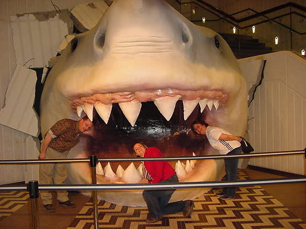 Shark ATTACK!.JPG