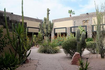 090715 Pueblo Grande Museum - Old Scottdale - Camelback