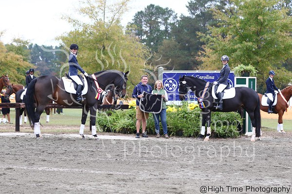 NCDCTA Dressage Championships and Autumn Leaves Show