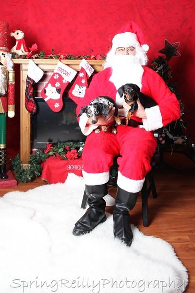 Uxbridge Pet Valu Portraits with Santa 2014