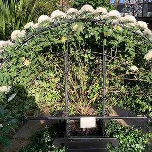 Longwood Gardens - Fall 2018