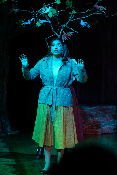 2018-03 Into the Woods Performance 0913.jpg