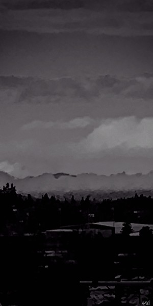 fog in the valley edited #2 bw.jpg