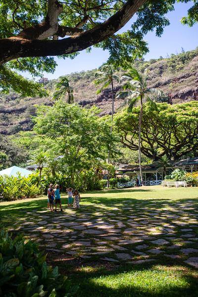 Hawaii2019-625.jpg