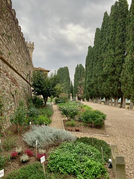 Tuscany_2018-56.jpg