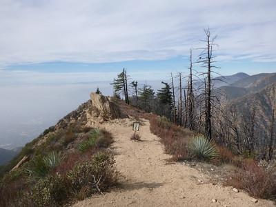 Echo Mt - Mt Lowe 1-16-16