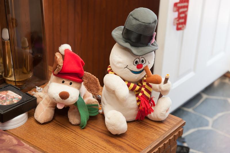 Christmas 2014-47.jpg