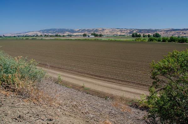 Pajaro Agricultural Preserve - Gilroy, CA