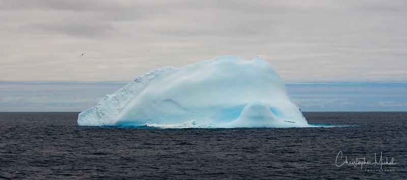 091203_iceberg_7005.jpg
