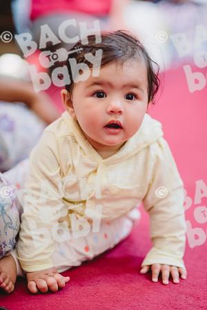 © Bach to Baby 2018_Alejandro Tamagno_Borough_2018-05-11 039.jpg