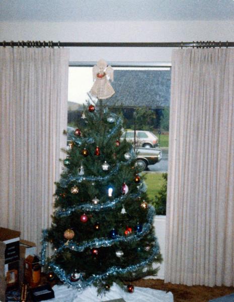 Christmas tree in California
