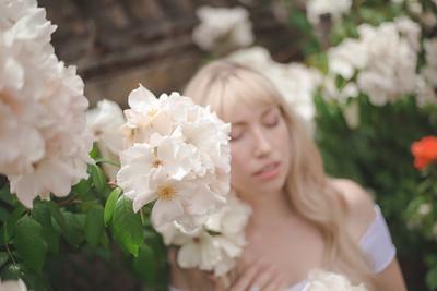 Verronica in the Roses