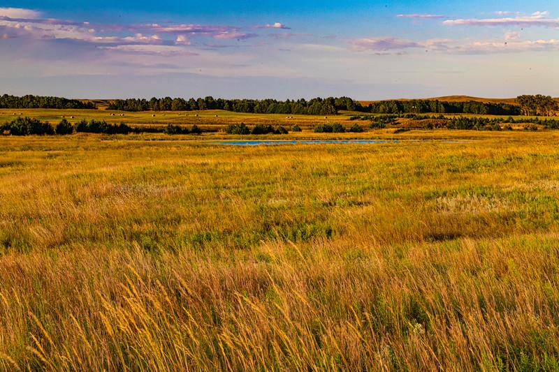 Horn Ranch-1436.jpg