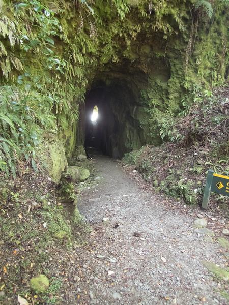 Tunnel Terrace Walk - Hokitika