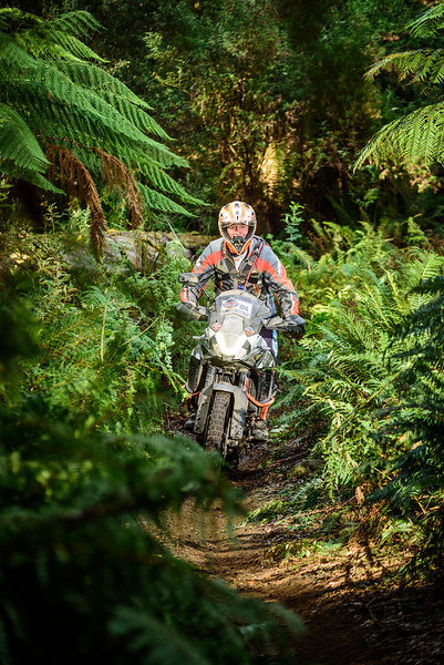 2019 KTM Australia Adventure Rallye (973).jpg