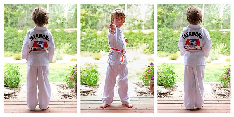 Taekwondo Triptych.jpg