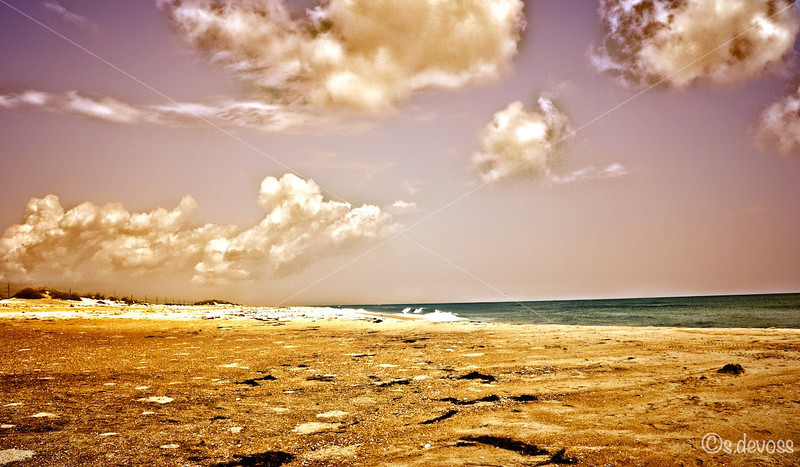 beachscape_0336HDR Wmark.jpg