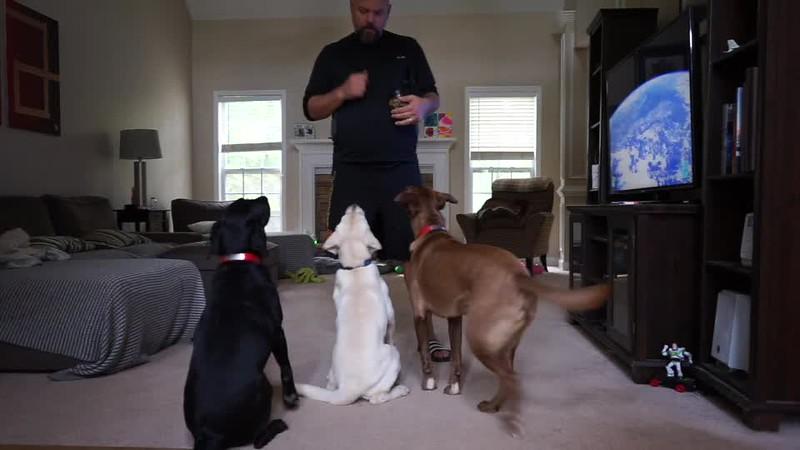 Duke Training Video