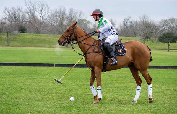 Polo in Brookshire