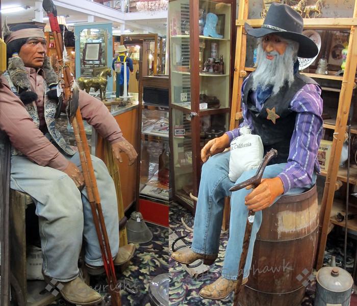 Cowboy & Indian - Judith Sparhawk