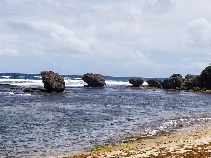 Barbados (31).jpg
