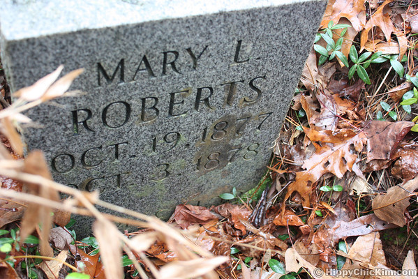 12.13.2011 Falling Water & Roberts Cemetery