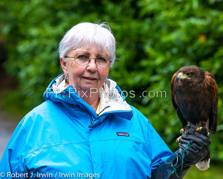 Ireland, Ashford Castle, Falconry
