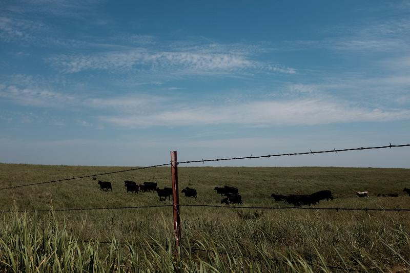 2019-07-23 Syngenta Nebraska-527.jpg