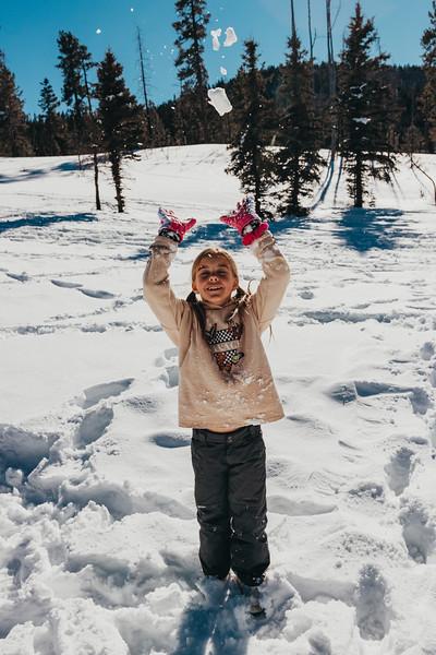 snowMLK-2600.jpg