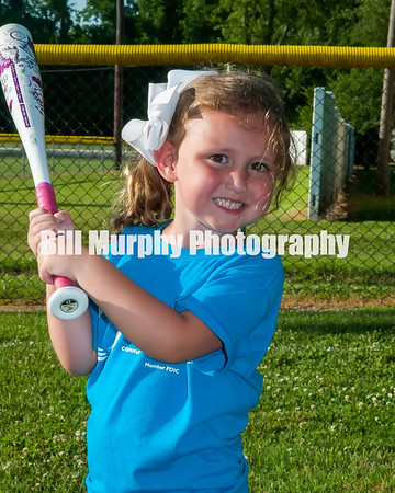 2016 3-4 Girls T-Ball Blue Team, June 14, 2016.