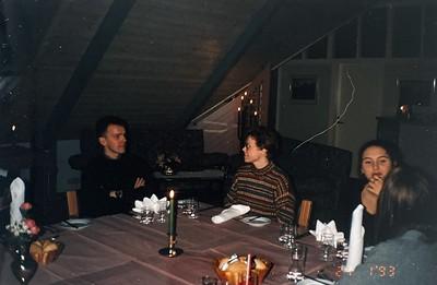 Þjálfaranámskeið 1993