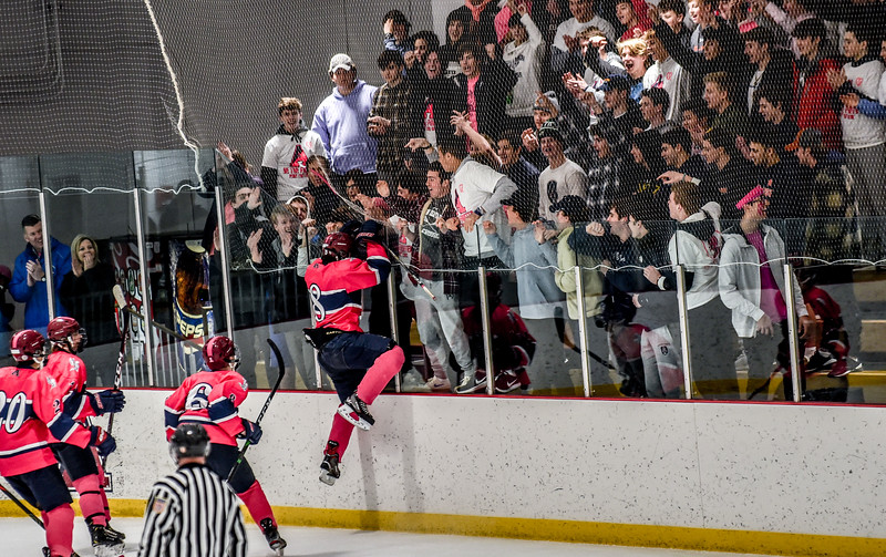 2020 Pink the Rink Dully5.jpg
